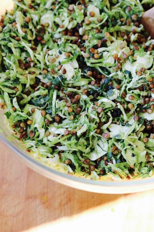 Shredded Brussel Sprout and Kale Salad with Lemon Avocado Dressing and Crispy Lentils